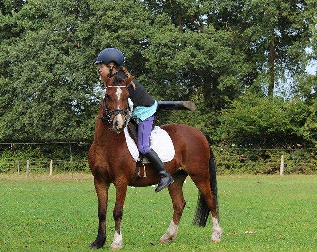 malá holčička jezdí na koni