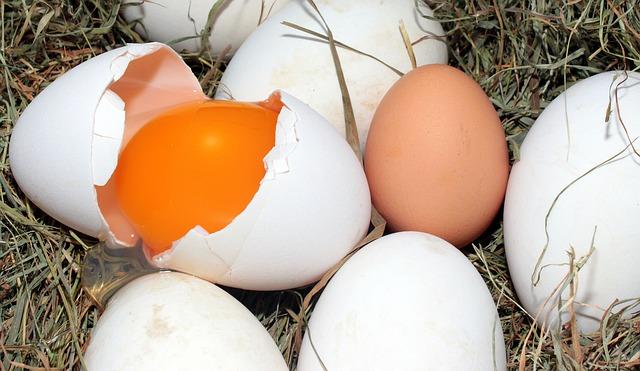 vejce v slámě.jpg